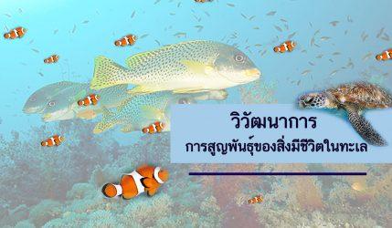 วิวัฒนาการ การสูญพันธุ์ของสิ่งมีชีวิตในทะเล