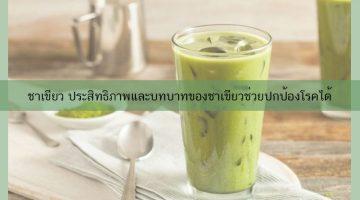 ชาเขียว ประสิทธิภาพและบทบาทของชาเขียวช่วยปกป้องโรคได้