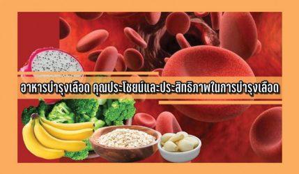 อาหารบำรุงเลือด คุณประโชยน์และประสิทธิภาพในการบำรุงเลือด